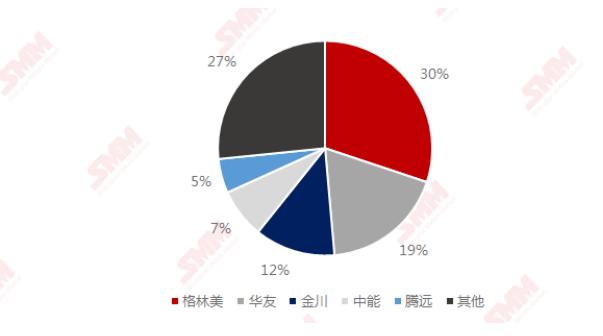 2020年中国氯化钴TOP5生产商市占率