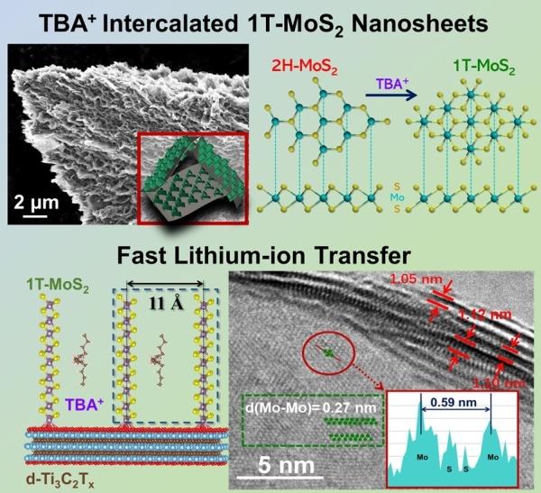 1T-MoS2/d-Ti3C2Tx二维复合纳米材料结构示意图