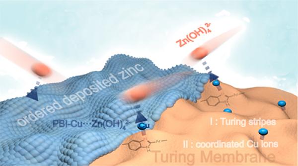 图灵膜的表面条纹、配位铜离子携手实现均匀锌沉积过程