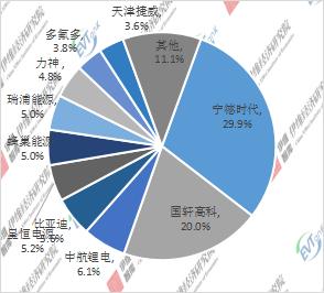 2020年中国微型电动汽车配套动力电池企业TOP10市场份额
